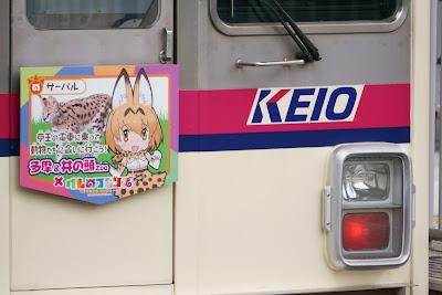 京王電鉄7000系に装着されたサーバルちゃんヘッドマーク