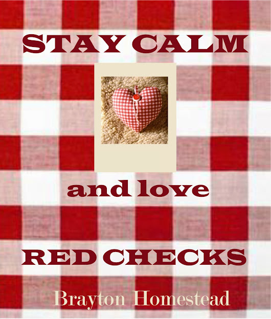 RED CHECKS are so in! Happy Valentines Day