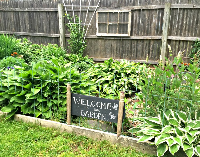 Green garden with garden sign.