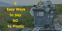 5 Easy Ways to Say NO to Plastic