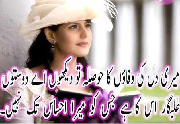 any status for whatsapp 2017 good urdu shayari meri dil ki wafaon ka hosla to dekho a dosto