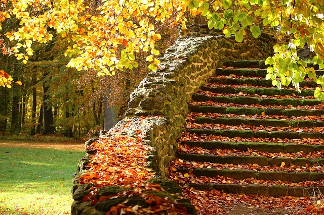 ảnh bậc thang đá mùa thu
