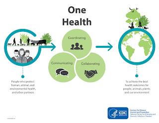 konsep One Health bahan pangan asal peternakan