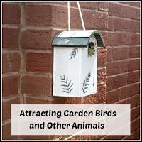 Bird Box with Title Overlaid