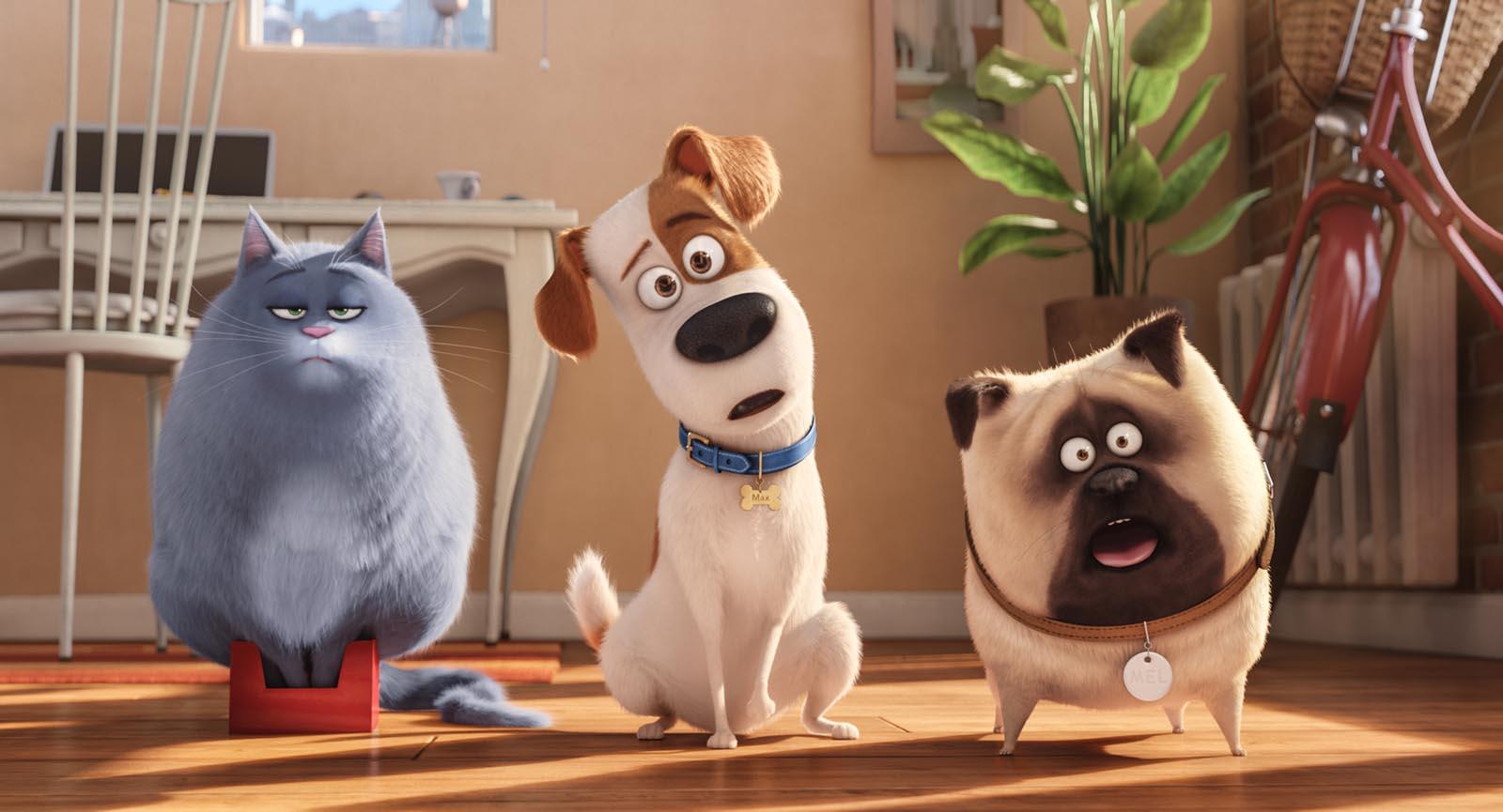 Por que você precisa assistir Pets - A Vida Secreta dos Bichos (e depois ver de novo)