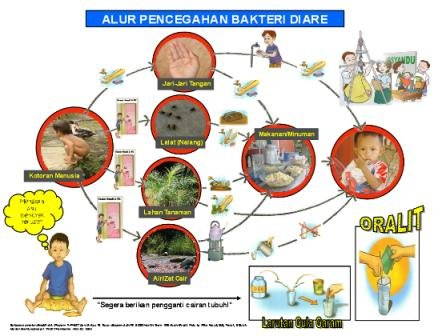Healthy For Your Life Askep Gastroenteritis