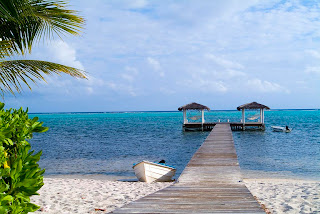 De viajeros por las Islas Cayman 14