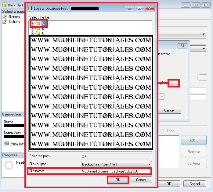 Seleccionando ruta y asignando un nombre al backups