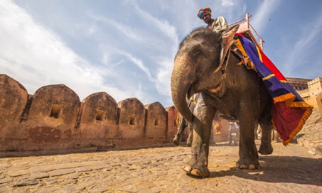 Rajasthan family tour packages