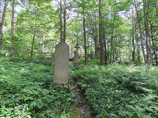 Cmentarz wsi Lipna.