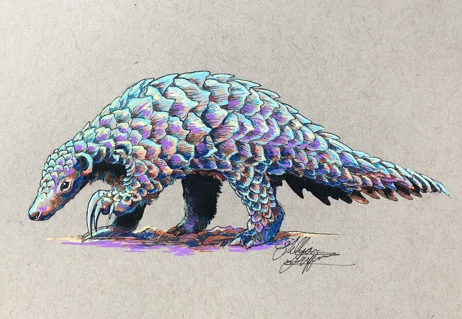 11-Pangolin-Gillian-Griffiths-www-designstack-co