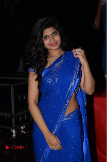 Alekhya Pictures in Blue Saree at Happy Birthday Audio Launch ~ Bollywood and South Indian Cinema Actress Exclusive Picture Galleries