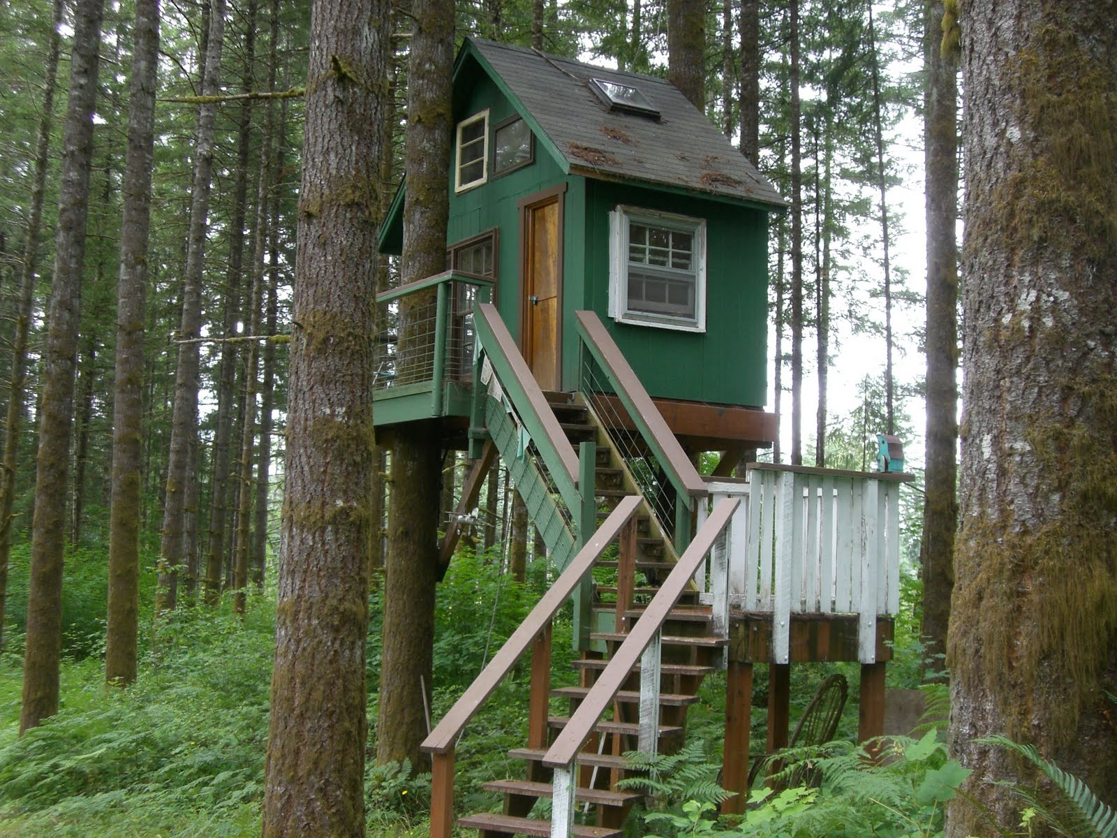 Simple Treehouse: Pictures Of Tree Houses And Play Houses From Around The