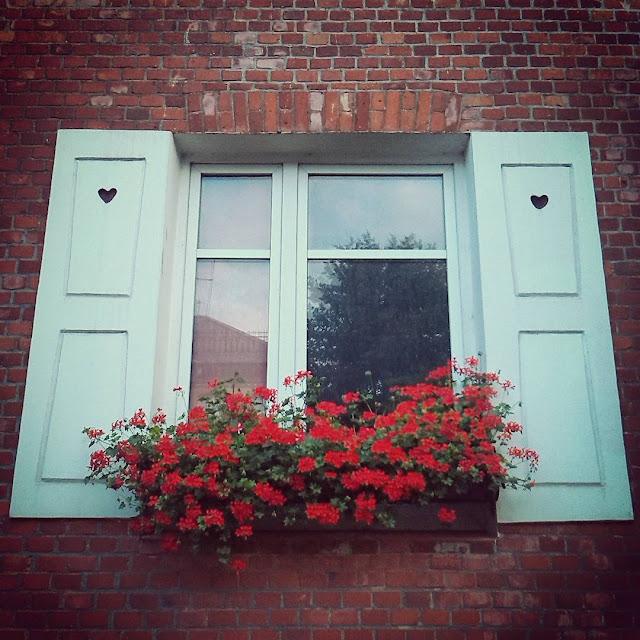 Окно калининградское