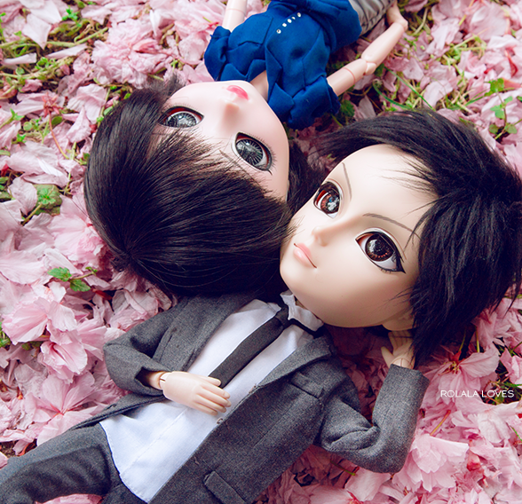 pullip, taeyang, fashion dolls, cherry blossoms, sakura