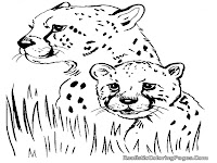 Cheetah Printable Coloring Pages