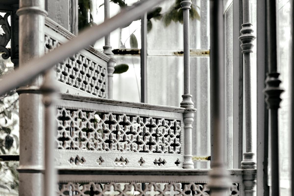 Talvipuutarha, Helsinki, myhelsinki, visithelsinki, garden, orangerie, puutarha, kasvit, kukat, viherkasvit, valokuvaaja, Frida Steiner, Visualaddict, visualaddictfrida, rappuset, stairs