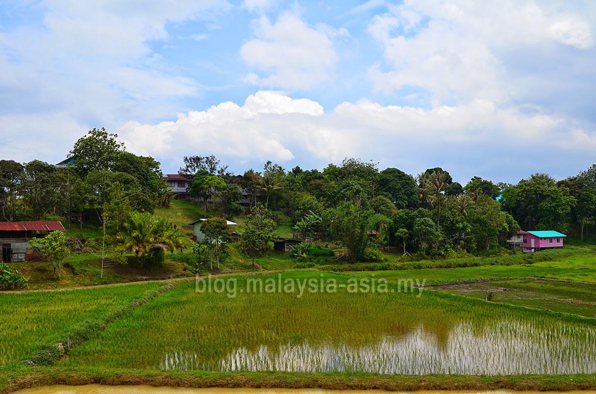 Bario Highlands in Sarawak