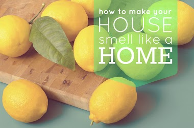5 Tips & Natural Remedies Against Bad Smells in the House