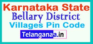 Bellary District Pin Codes in Karnataka State