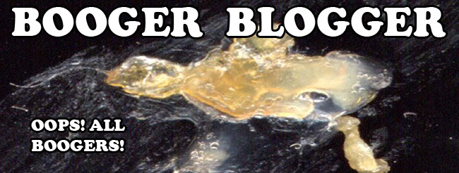 Booger Blogger: Pick of the Week: Booger #C0203