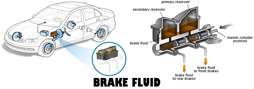 Brake fluid location