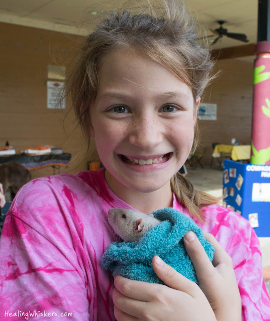 Oliver the Therapy Rat at Ridge Ferry Park for Compassionate Paws' Birthday