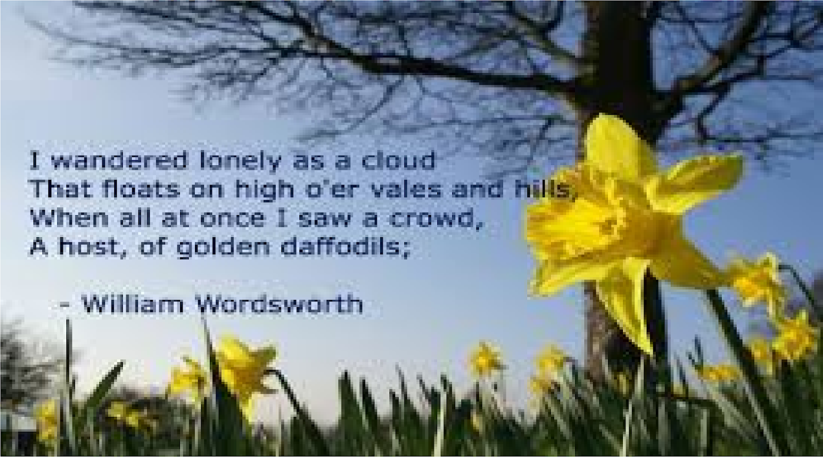 the poem daffodils by william wordsworth analysis