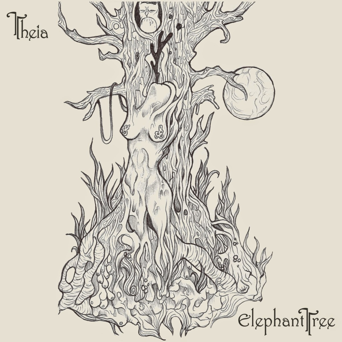 Elephant Tree - Theia
