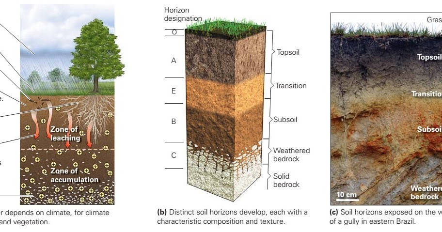 Soil learning geology for Uses of soil in english