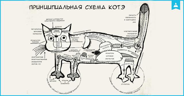 Кот cat Пинакотека