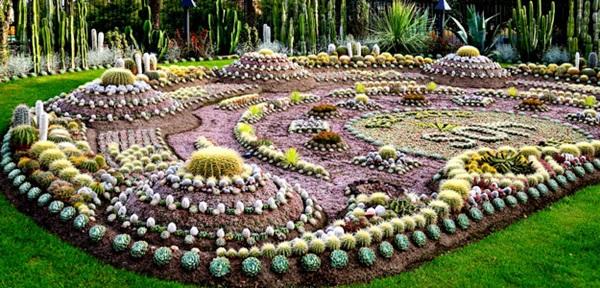 El cuaderno de campo c mo hacer un jard n de cactus y suculentas mini jardines de cactus - Jardines con cactus y piedras ...