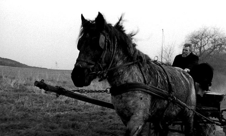 人生論的映画評論・続: ニーチェの馬('11) タル・ベーラ