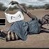 Las ONG, gastar dinero para pedir. Por @jsobrevive