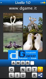 Trova la Parola - Foto Quiz con 4 Immagini e 1 Parola pacchetto 1 soluzione livello 10