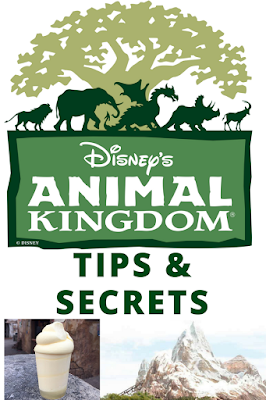 Insider Tips and Secrets for Disney's Animal Kingdom park
