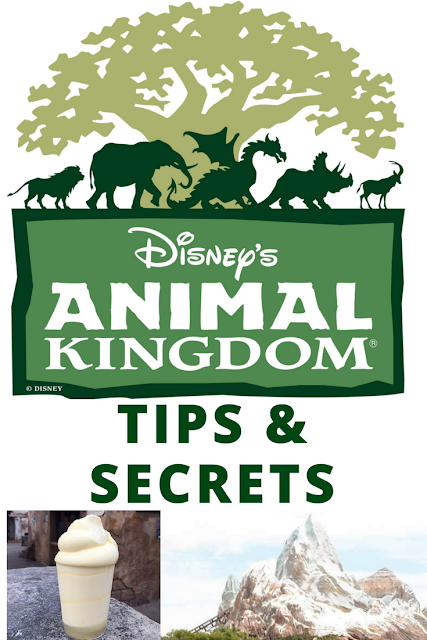 12 Insider Tips & Secrets for visiting Disney's Animal Kingdom theme park like a pro