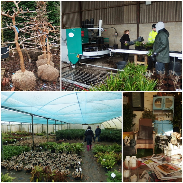 A quick tour around Hortus Loc