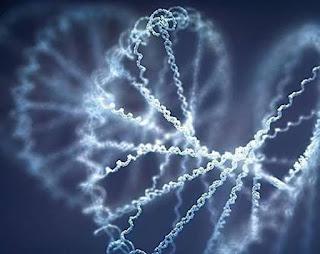 IndiGen Genome Project