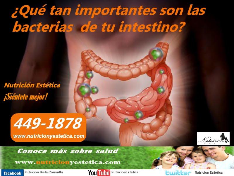 Hipoclorhidria perdida de peso repentina