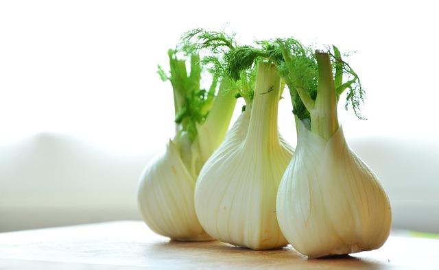 Légumes Autorisés Pour Chien - Fenouil