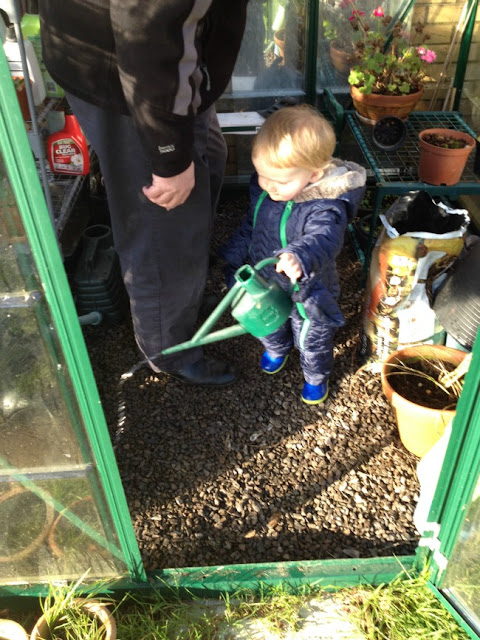 toddler in green house with watering can