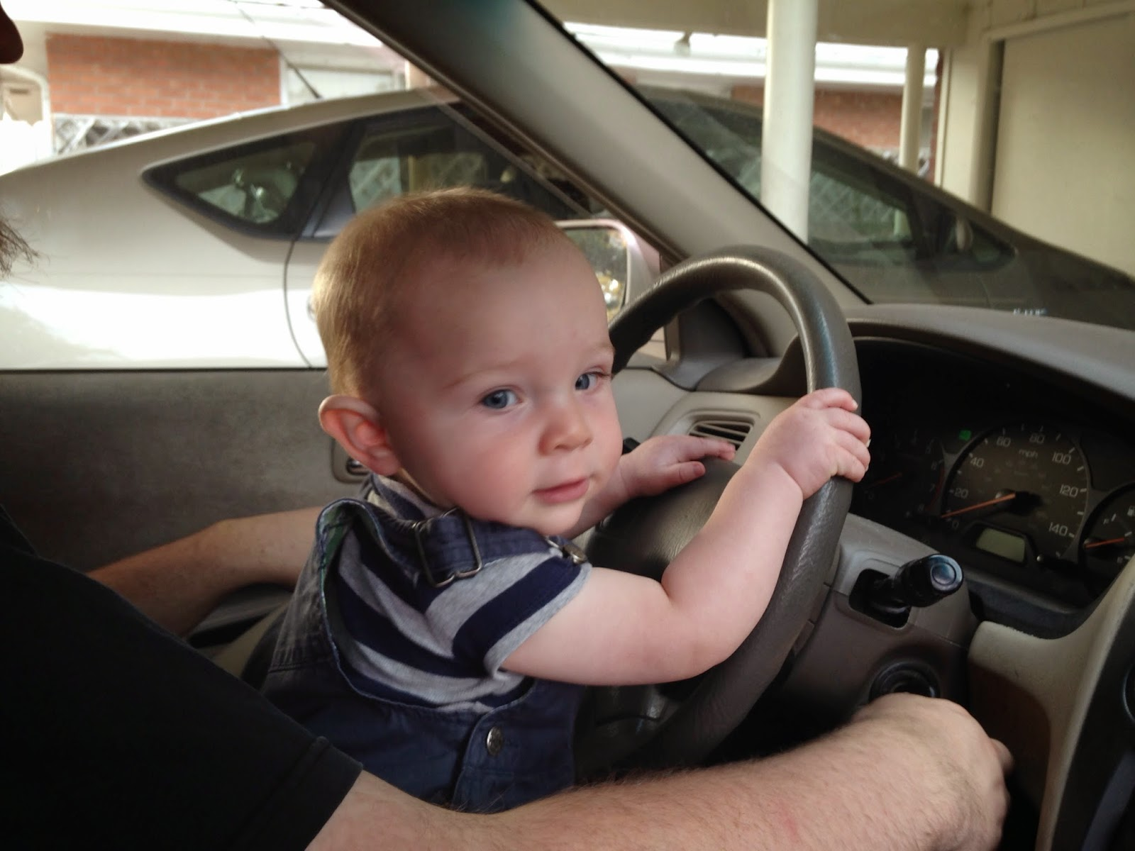 Gambar bayi lucu menyetir mobil gratis