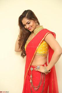Actress Ashwini in Golden choli Red saree Spicy Pics ~  113.JPG