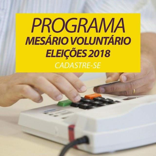 Senador Canedo: Inscrições abertas para Mesário Voluntário