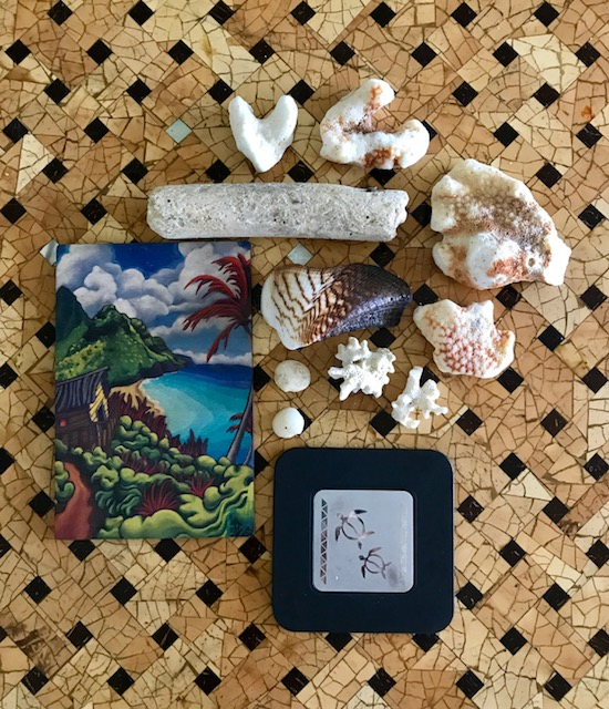 Flat-lay of coral and shells