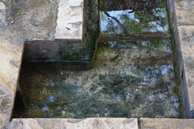 נקבת המים עין חובלה
