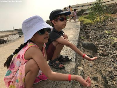 Children feeding squirrels at the beach
