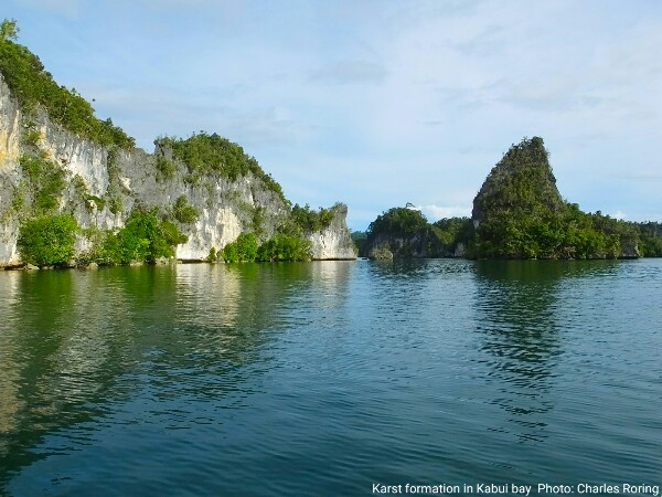 traveling to kabui bay of Raja Ampat in West Papua province of Indonesia