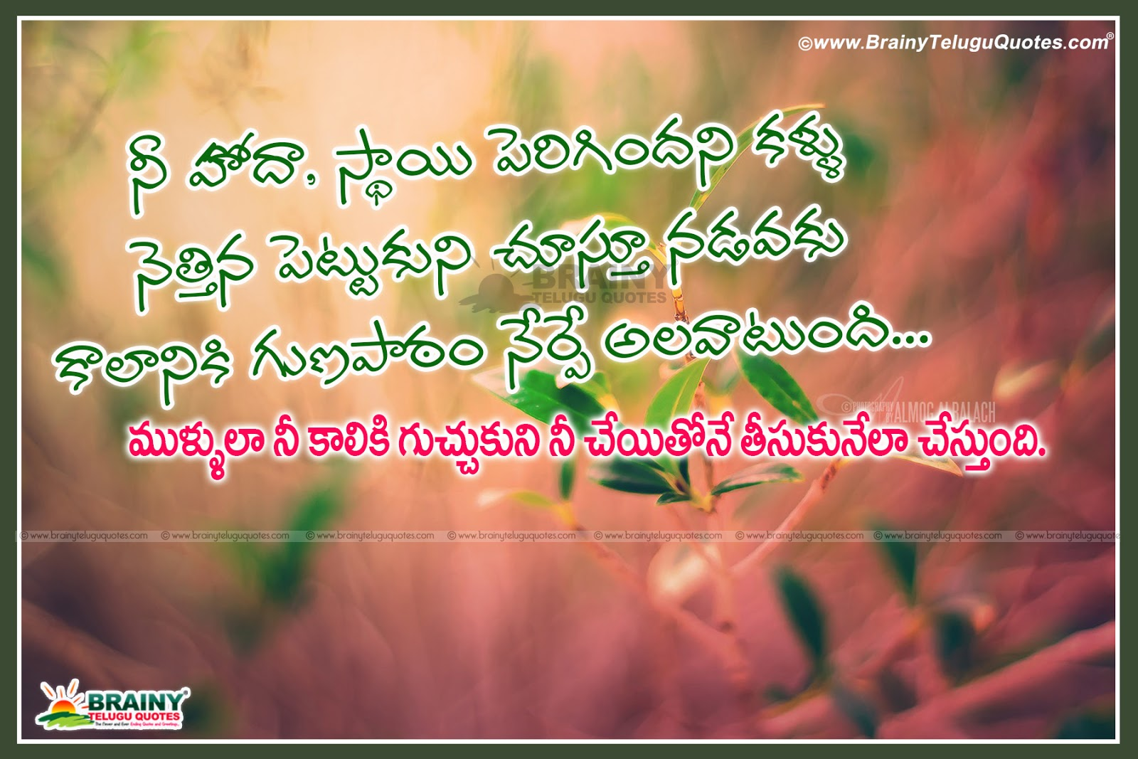 Real Life Best Inspirational Telugu Quotations Messages